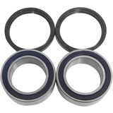 Modquad Replacement Carrier Bearing and Seal Set
