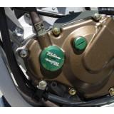 Ride Engineering Timing Plugs