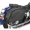 All American Rider Ameritex Futura 2000 Detachable Slant Saddlebags - All American Rider Overnite Sissy Bar Bag