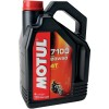 Motul 7100 Synthetic Oil - Cobra Lightbar