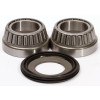 Pivot Works Steering Stem Bearing Kit - 2002 Suzuki RM250 Pivot Works Swing Arm / Shock / Linkage Bearing Combo